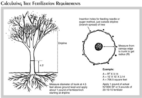 Calculating fertilizer requirements